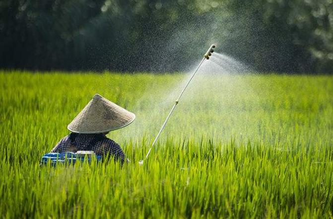Производительность сельскохозяйственного силикона